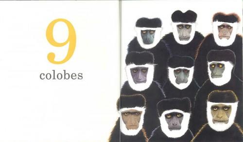 Un gorille9-700